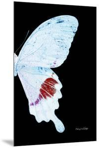 Miss Butterfly Hermosanus - X-Ray Right Black Edition by Philippe Hugonnard
