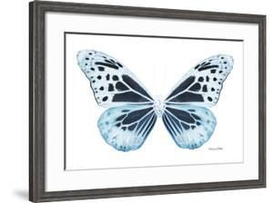 Miss Butterfly Melaneus - X-Ray White Edition by Philippe Hugonnard