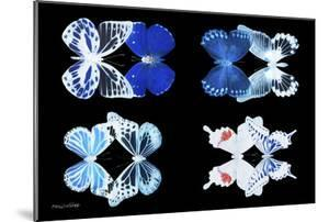 Miss Butterfly X-Ray Duo Black II by Philippe Hugonnard