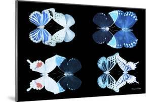 Miss Butterfly X-Ray Duo Black III by Philippe Hugonnard