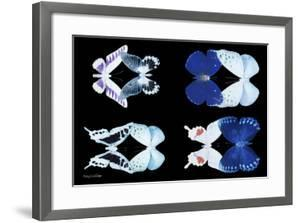 Miss Butterfly X-Ray Duo Black by Philippe Hugonnard