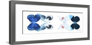 Miss Butterfly X-Ray Duo White Pano IV by Philippe Hugonnard
