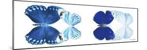 Miss Butterfly X-Ray Duo White Pano XI by Philippe Hugonnard