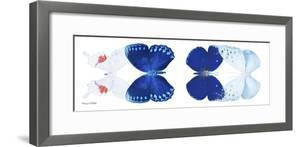 Miss Butterfly X-Ray Duo White Pano by Philippe Hugonnard