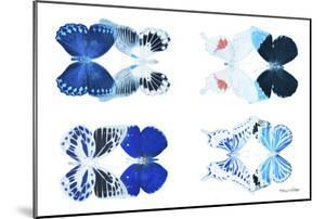 Miss Butterfly X-Ray Duo White VII by Philippe Hugonnard