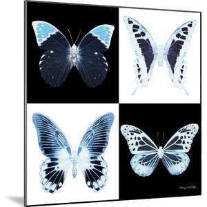 Miss Butterfly X-Ray Square II by Philippe Hugonnard