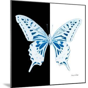 Miss Butterfly Xuthus Sq - X Ray B&W Edition by Philippe Hugonnard