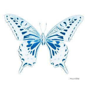 Miss Butterfly Xuthus Sq - X Ray White Edition by Philippe Hugonnard