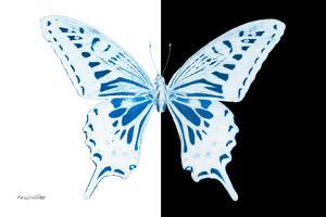 Miss Butterfly Xuthus - X Ray B&W Edition by Philippe Hugonnard