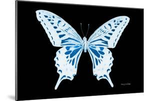 Miss Butterfly Xuthus - X Ray Black Edition by Philippe Hugonnard
