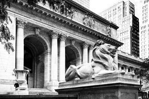 New York Public Library - Manhattan - United States by Philippe Hugonnard