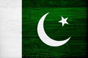 Pakistan Flag Design with Wood Patterning - Flags of the World Series by Philippe Hugonnard