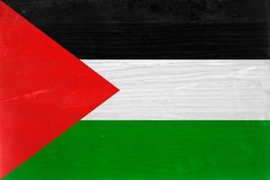 Palestine Flag Design with Wood Patterning - Flags of the World Series by Philippe Hugonnard