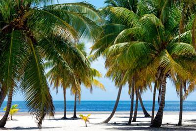 Paradise Beach - Florida - USA by Philippe Hugonnard