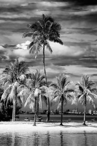 Paradisiacal Beach overlooking Downtown Miami - Florida by Philippe Hugonnard