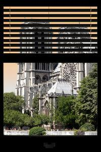 Paris Focus - Notre Dame Cathedral Window View by Philippe Hugonnard