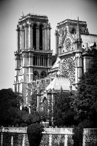Paris Focus - Notre Dame Cathedral by Philippe Hugonnard