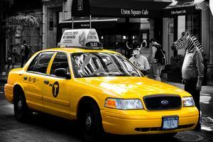 Safari CityPop Collection - NYC Union Square II by Philippe Hugonnard