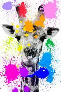 Safari Colors Pop Collection - Giraffe by Philippe Hugonnard