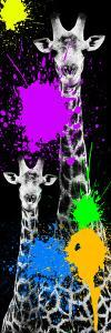 Safari Colors Pop Collection - Giraffes IV by Philippe Hugonnard