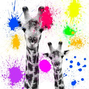 Safari Colors Pop Collection - Giraffes Portrait V by Philippe Hugonnard