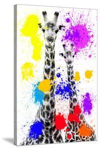 Safari Colors Pop Collection - Giraffes by Philippe Hugonnard