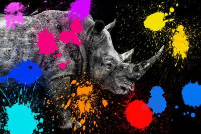 Safari Colors Pop Collection - Rhino II by Philippe Hugonnard