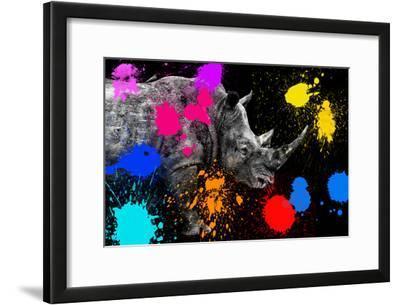 Safari Colors Pop Collection - Rhino II