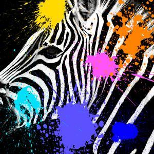 Safari Colors Pop Collection - Zebra Portrait II by Philippe Hugonnard
