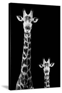 Safari Profile Collection - Giraffe and Baby Black Edition II by Philippe Hugonnard