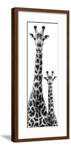 Safari Profile Collection - Giraffe and Baby White Edition IV by Philippe Hugonnard