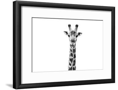 Safari Profile Collection - Giraffe Portrait White Edition II by Philippe Hugonnard