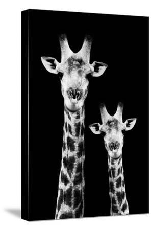 Safari Profile Collection - Portrait of Giraffe and Baby Black Edition IV