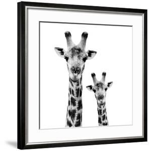 Safari Profile Collection - Portrait of Giraffe and Baby White Edition II by Philippe Hugonnard
