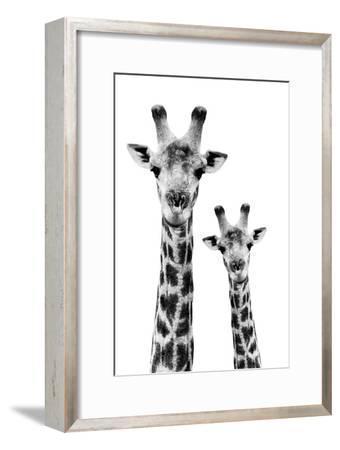 Safari Profile Collection - Portrait of Giraffe and Baby White Edition IV