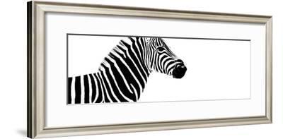 Safari Profile Collection - Zebra White Edition IV