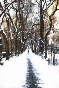 Snowy road Central Park by Philippe Hugonnard