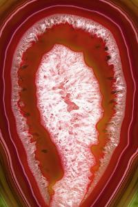 So Pure Collection - Red Agate Slice by Philippe Hugonnard