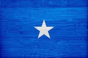 Somalia Flag Design with Wood Patterning - Flags of the World Series by Philippe Hugonnard