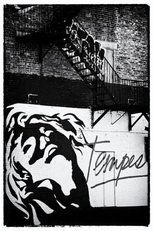 Street Art - Tempest - Manhattan - New York - United States by Philippe Hugonnard