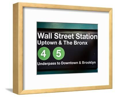 Subway Station Sign, Wall Street Station, Manhattan, New York City, United States