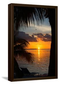 Sunset Landscape - Miami - Florida by Philippe Hugonnard