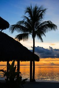 The Beach Hut and Palm Tree at Sunset - Florida - USA by Philippe Hugonnard