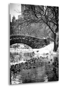 The Gapstow Bridge of Central Park in Winter, Manhattan in New York City by Philippe Hugonnard