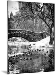 The Gapstow Bridge of Central Park in Winter, Manhattan in New York City by Philippe Hugonnard