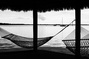 The Hammocks - Florida by Philippe Hugonnard