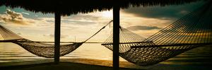 Two Hammocks at Sunset - Florida by Philippe Hugonnard