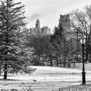 View of Central Park with a Squirrel running around on the Snow by Philippe Hugonnard