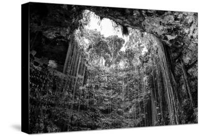 ¡Viva Mexico! B&W Collection - Ik-Kil Cenote