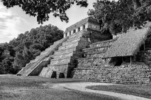 ¡Viva Mexico! B&W Collection - Mayan Temple of Inscriptions in Palenque III by Philippe Hugonnard
